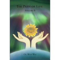 The Path of Life – volume II – the Holy Decision: the Three Stages of the Chaos